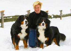 dogs.eveline